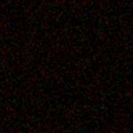 Subject AGZ0009v2b